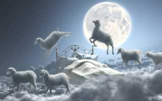 Сон, где снится стадо овец: толкования из разных сонников
