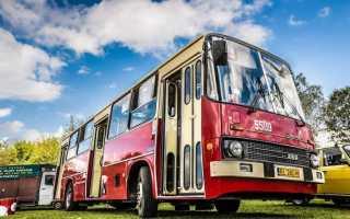 К чему снится поездка в автобусе: трактование по сонникам
