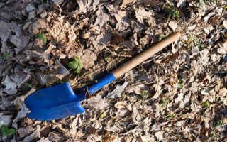 К чему снится лопата: толкование по различным сонникам