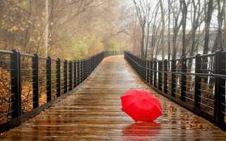 Значение по различным сонникам к чему снится зонт