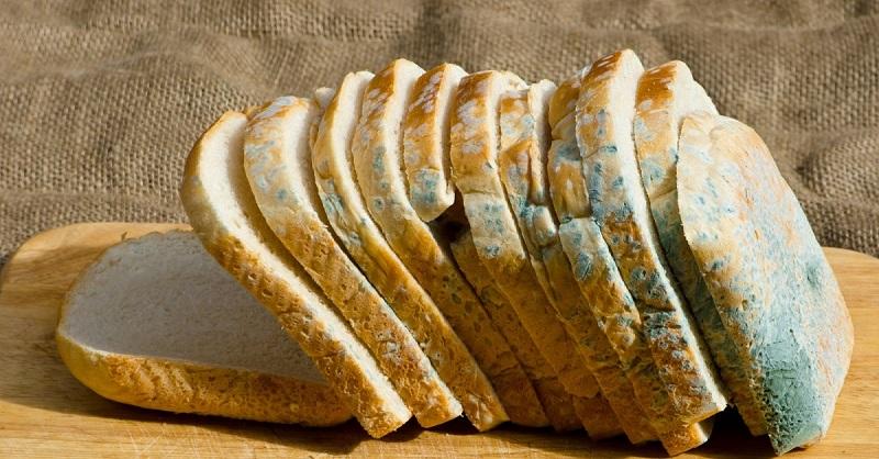 сонник хлеб с плесенью