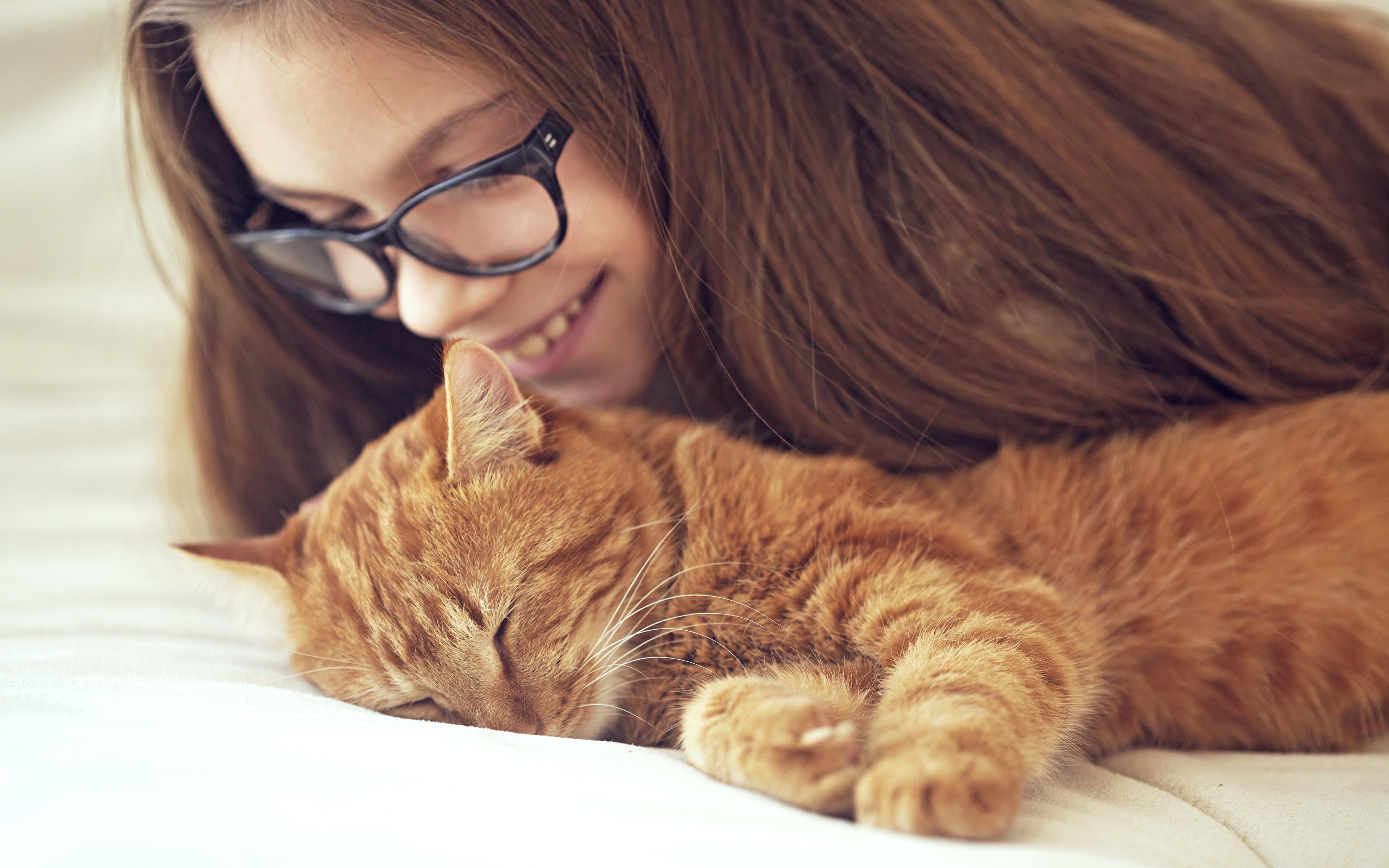 рыжий кот с девушкой